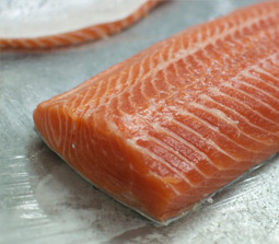 Norwegian Atlantic Salmon Trout (Oncorhynchus Mykiss)